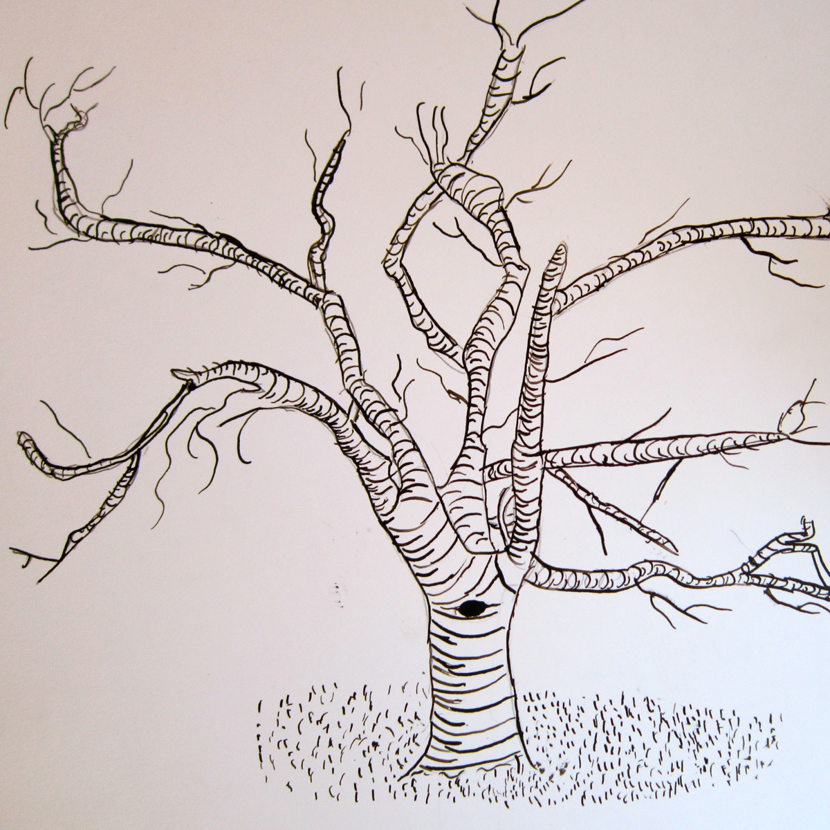 Bäume Und Landschaften Zeichnen Und Malen Mit Kindern Zeichnen Und